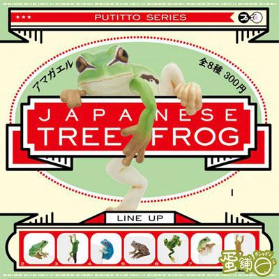 雨蛙杯緣裝飾(BOX)(全套)