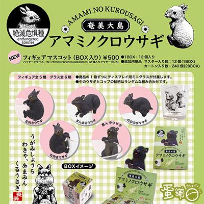 奄美大島野黑兔杯緣(日本限定)