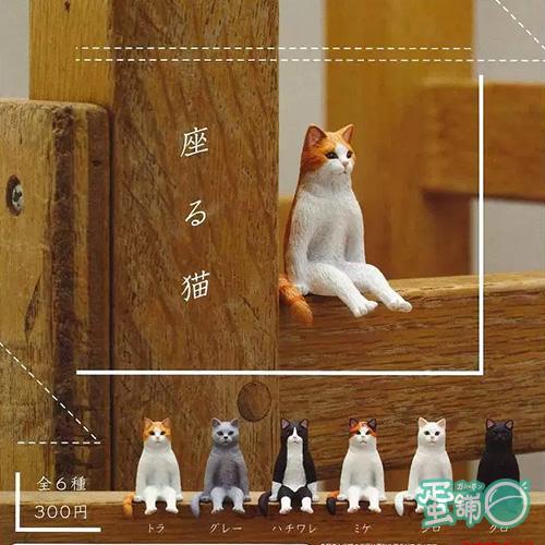 不可思議動物-坐姿貓