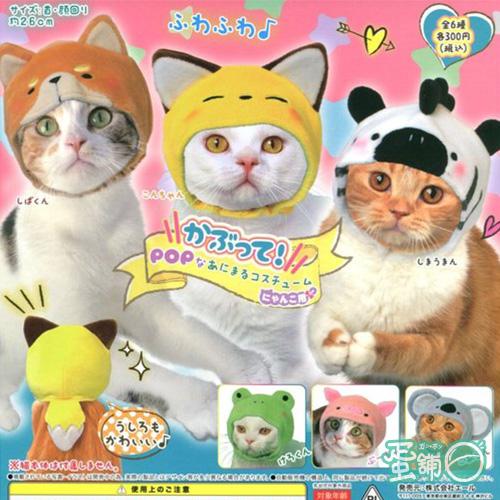 貓咪用動物造型頭套P2