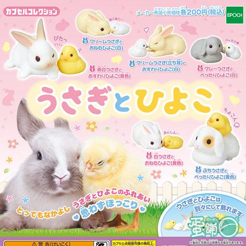 小兔與小雞好麻吉
