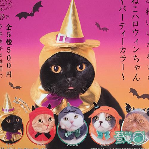 貓咪頭巾P11-萬聖節新色篇