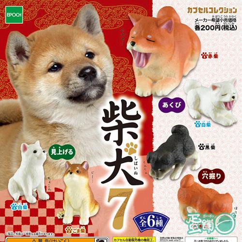 可愛柴犬造型公仔P7(全套)