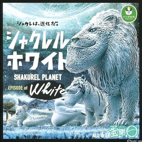 戽斗白子動物特別篇