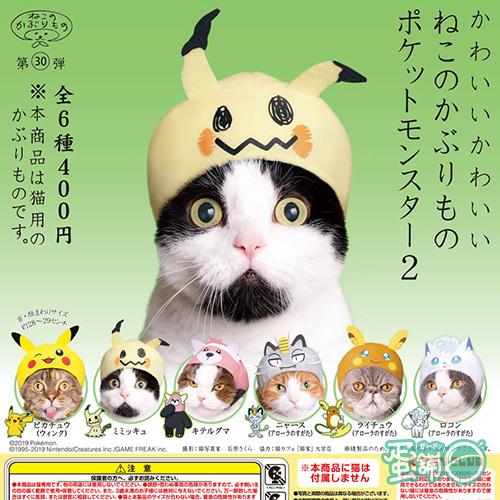 貓咪專屬頭巾P24-精靈寶可夢篇P2