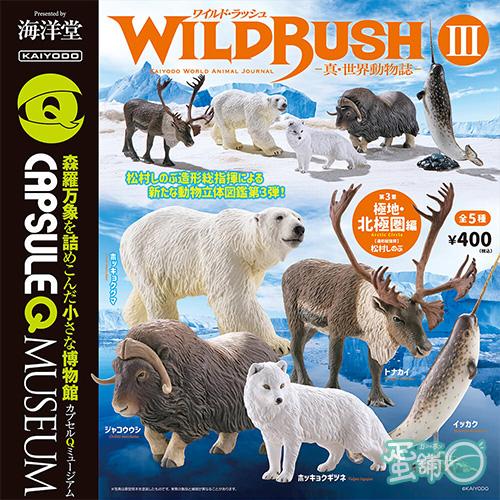 真世界動物誌P3-極地北極圈篇(BOX)(一中盒)