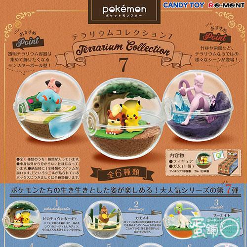 寶可夢寶貝球盆景品P7(BOX)(隨機出貨)