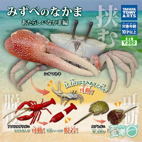 水邊生物公仔-甲殼篇