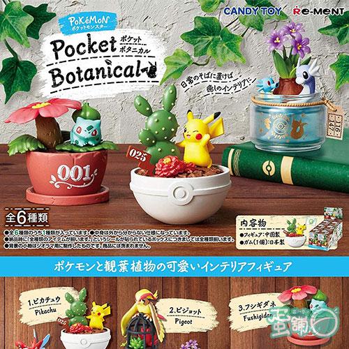 寶可夢造型盆栽景品(BOX)(一中盒)