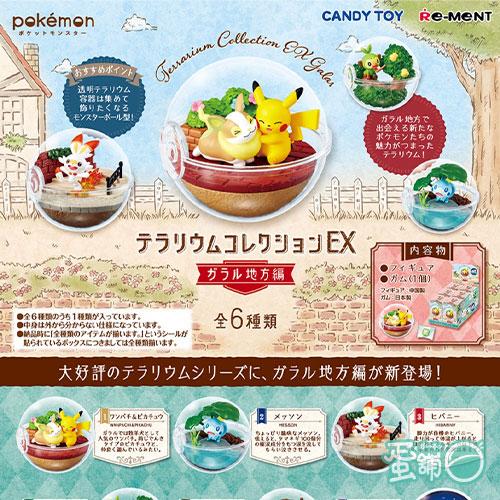 寶可夢寶貝球盆景品EX-伽勒爾篇(BOX)(隨機出貨)