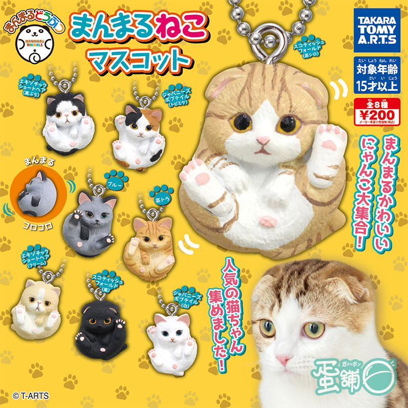 圓圓貓咪珠鍊吊飾