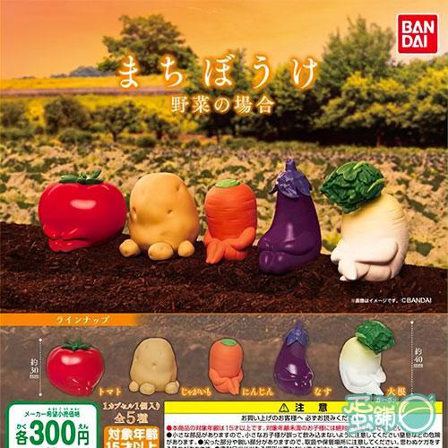 等待中蔬菜們